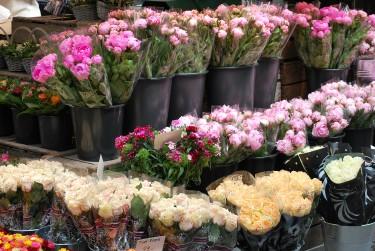 Blommor, Torvehallerne